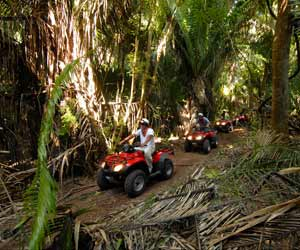 Elephant Trek, ATV, and Rafting
